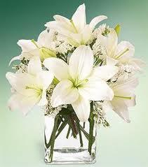 bunga pengantin013