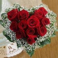 mawar005